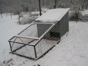 Trapezoidal chicken coop with a base of 2x8 ft., a height of 1 ft. on one side, and a height of 4 ft. on the other side.  The narrow portion of the coop is enclosed by mesh while the reast is enclosed by corragated aluminum.