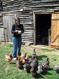 Whitney feeding chickens